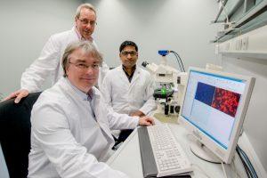 Ralf Erdmann (vorne), Wolfgang Schliebs (stehend) und Vishal Kalel sind Experten für Proteinimport-Prozesse.